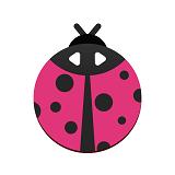 瓢虫视频编辑器